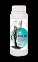 تصاویر Root Zn / روت روی