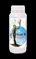 تصاویر Root B / روت بی
